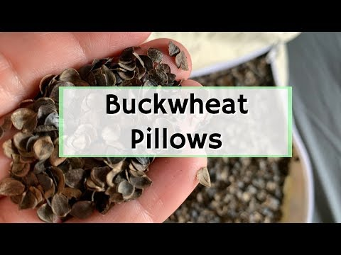 What Are Buckwheat Pillows? | Best Natural Pillow for Neck Alignment | Firm Support for Sleeping