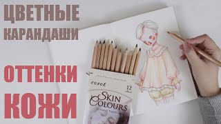 оТТЕНОК КОЖИ цветными карандашами