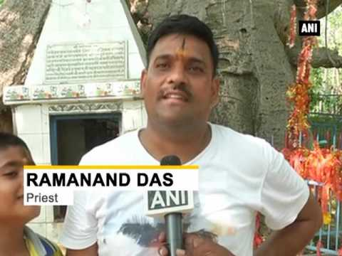 Oldest tree worshipped by Hindu devotees