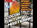 Masteran Lovebird Konslet Memicu Dobelan Cepat Keluar  Mp3 - Mp4 Download