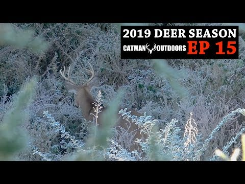 Bucks On The Move! Pre-Rut Bowhunting In Tennessee - 2019 Deer Season, Ep. 15