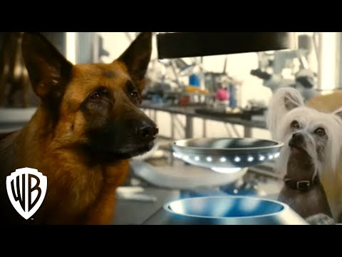 cats-&-dogs:-revenge-of-kitty-galore-trailer