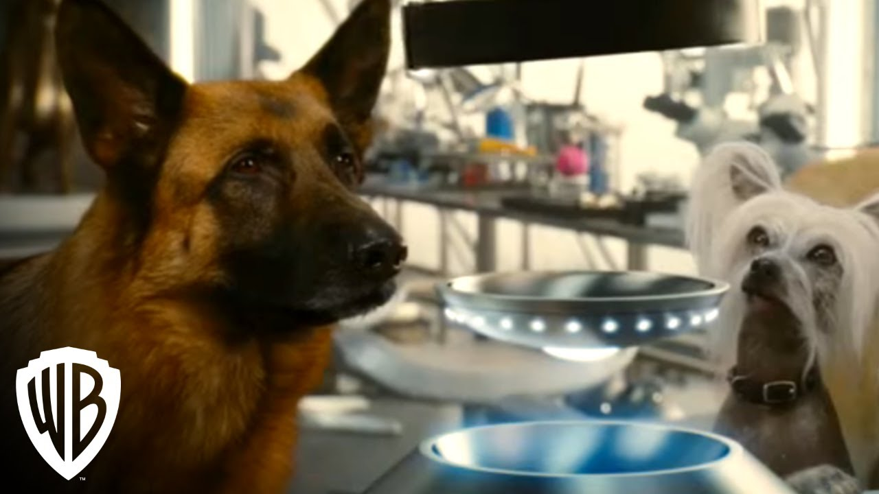 Download Cats & Dogs: The Revenge of Kitty Galore   Digital Trailer   Warner Bros. Entertainment