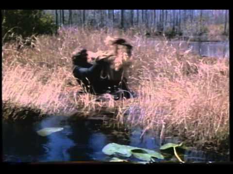 No Mercy 1986 Movie