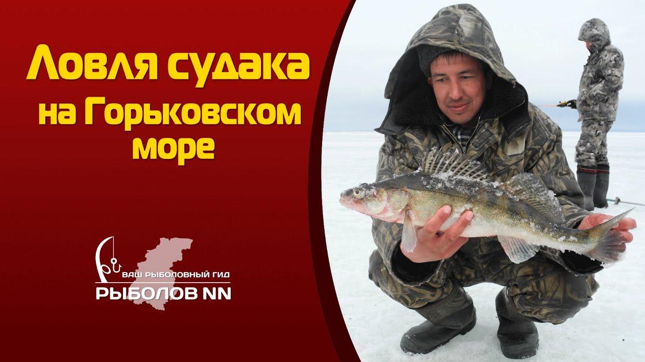 Ловля судака на Горьковском море