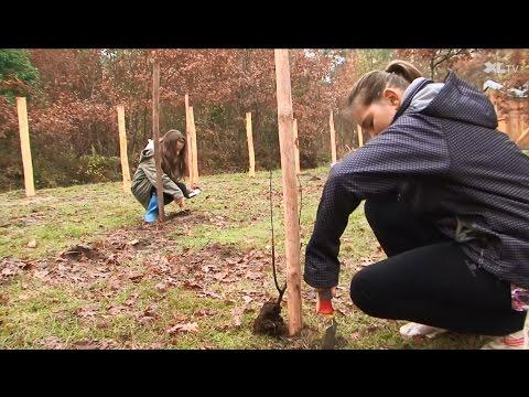 Les écoliers de Léon participent à l'aménagement de leur étang