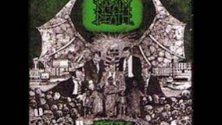 Napalm Death- Polluted Minds