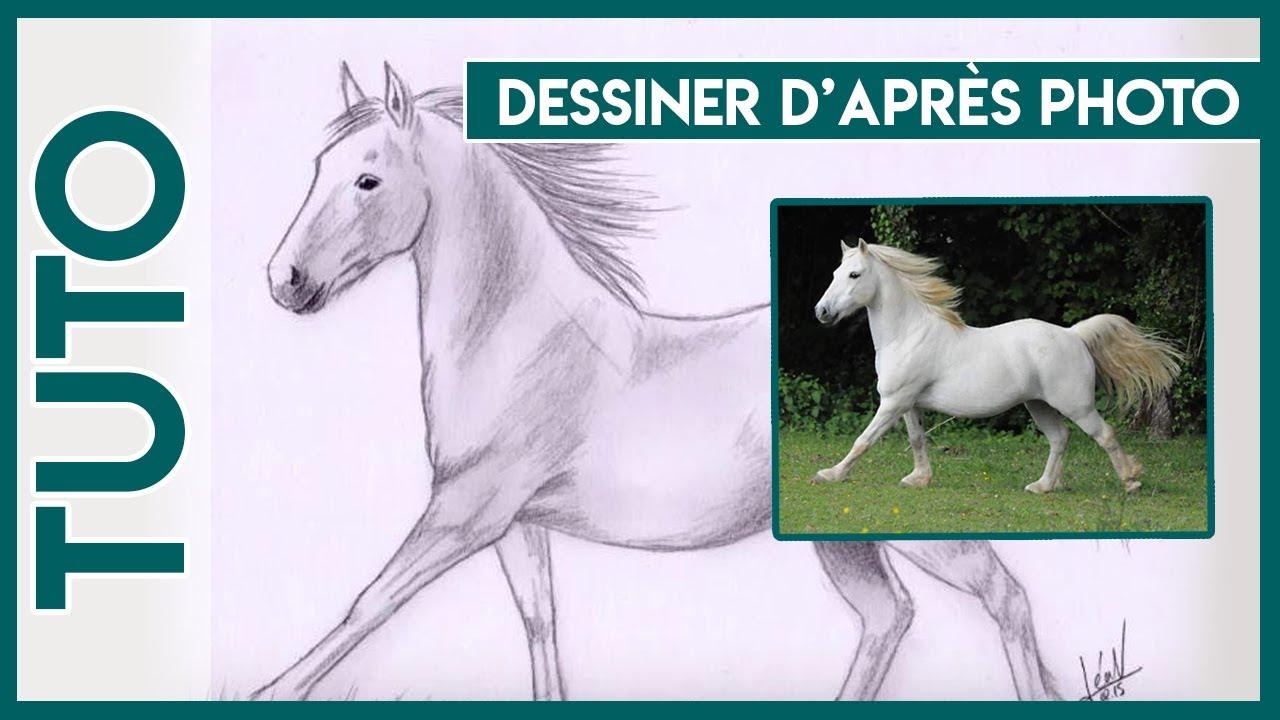 Inspirant Dessin A Imprimer De Cheval Qui Se Cabre