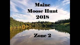 Maine Bull Moose Hunt 2018