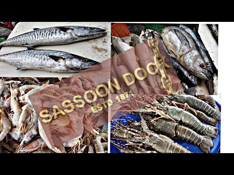Sassoon Dock |fish 🐠🐋🐟market|machi Market|mumbai