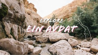 A Tour of the Incredible Ein Avdat