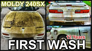 Disaster Barnyard Find   Extremely Moldy 240SX   First Wash In 12 Years   Car Detailing Restoration!