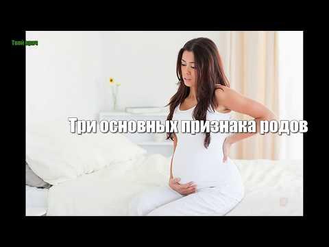 Три основных признака родов