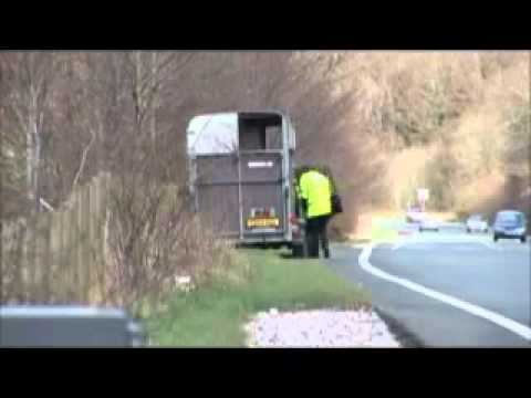 UK Police State Generates revenue by hiding speed camera in horsebox & UK Police State Generates revenue by hiding speed camera in ... Aboutintivar.Com