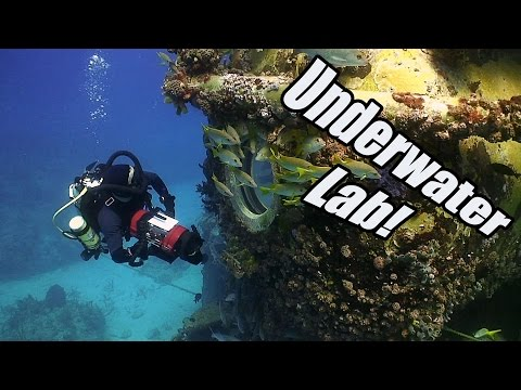 Aquarius Reef Base | JONATHAN BIRD'S BLUE WORLD