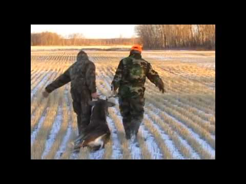Chassomaniak, chasse aux chevreuils en saskatchewan 2012