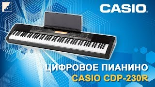 Обзор цифрового пианино CASIO CDP-230