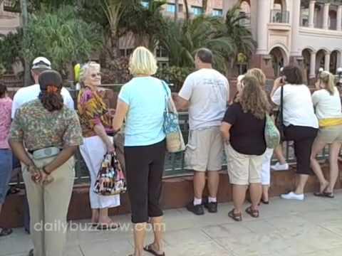 Crazy Cheap Bahamas Vacation (The Daily Buzz)
