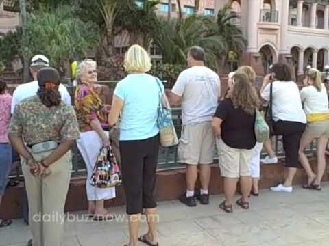 Crazy Cheap Bahamas Vacation (The Daily Buzz)