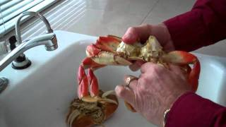 How to clean a crab