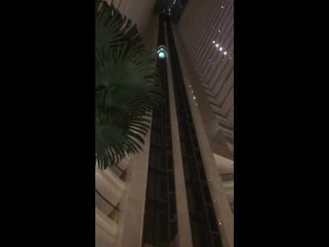 Put cv , dusitthani hotel abudhabi