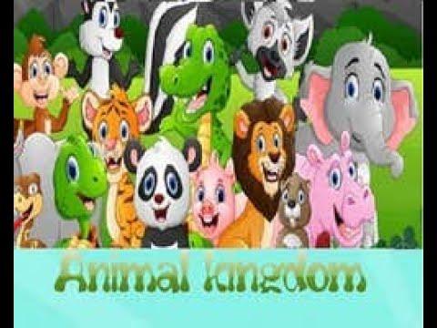 edukativne-igre-za-decu-od-5-godina-Životinjsko-carstvo