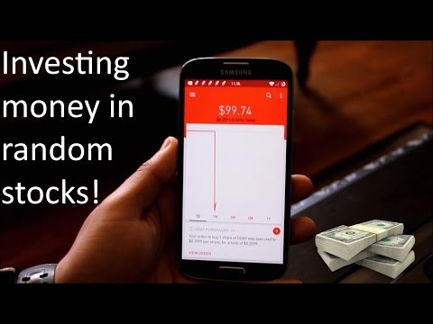Investing money in random stocks (+ My Results)