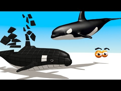 CUBE BUILDER for KIDS (HD) - Build an Orca Killer Whale for Children - AApV