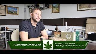 Производство технической конопли в России (ООО Мор...