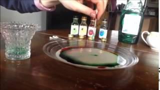 Hydrophobic Experiment