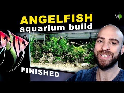 4ft ANGELFISH JUNGLE AQUARIUM BUILD: FINISHED    MD FISH TANKS