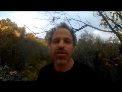 VLOG #258: Standardizing the distances of running events sround the world like THIS