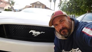 How to: Get a 2015 Mustang GT to Sound like a Beast!!!