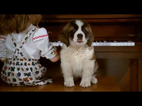 Beethoven Dog Full Movie Part