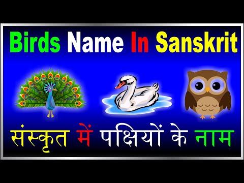 #संस्कृत में पक्षियों के नाम#Birds Name In Sanskrit#पक्षिणाम नामः