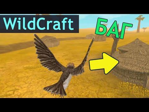 Орла ЗАКРЫЛИ В ДОМЕ ! Новые БАГИ в WildCraft!