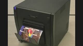 Best Citizen Printer to Buy in 2020   Citizen Printer Price, Reviews, Unboxing and Guide to Buy