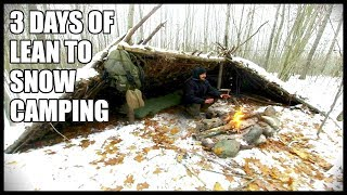 3 DAYS Of LEAN TO SNOW CAMPING: Freezing Temperatures, Small Projects, Outdoor Cooking