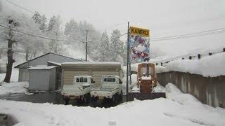 Niigata Japan Koi Fish Farm Tour - Breeder: Kaneko  Koi Farm