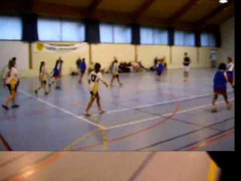 handball provin