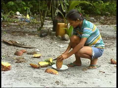 NATRAJTV INDIAN VILLAGE MATTA SURINAM Arowakken tribe Eco tourism