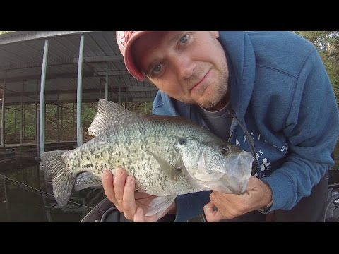 Slab Crappie Frenzy!!! Arkansas Crappie Fishing!