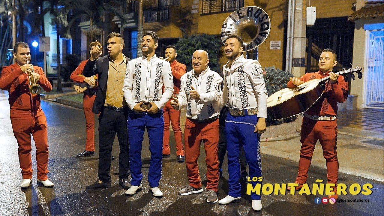 LOS MARIACHIS -  LOS MONTAÑEROS