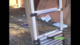 Telesteps Telescopic Ladders