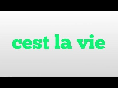 cest la vie meaning and pronunciation