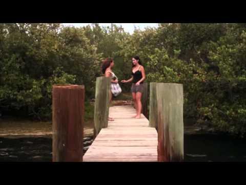 Dwugłowy rekin atakuje