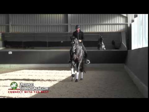 Dressage training by Gareth Hughes - How to do the canter half pass