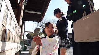 七五三出張撮影ムービー(愛知県稲沢市・国府宮神社)