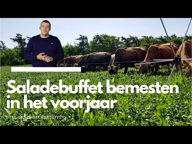 How to: Saladebuffet bemesten in het voorjaar