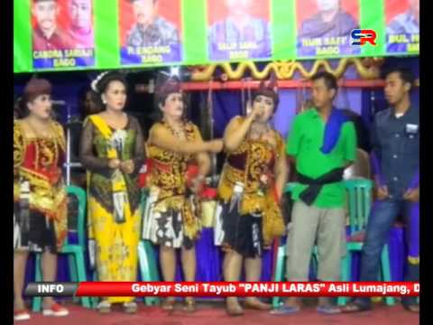 Tayub Panjilaras Lumajang Part 7